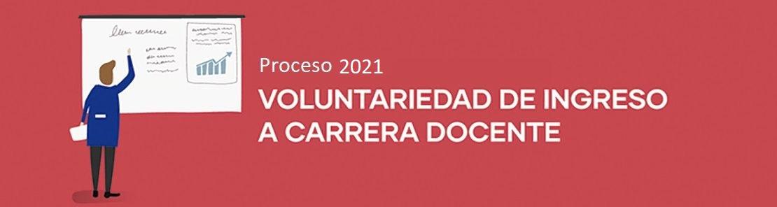 voluntariedad carrera docente